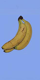 バナナ3_全_青