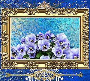 〔Violet in winter~冬のすみれ~〕