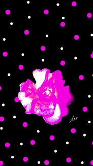 〔椿と水玉⑦〕