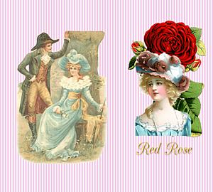 『red rose①』