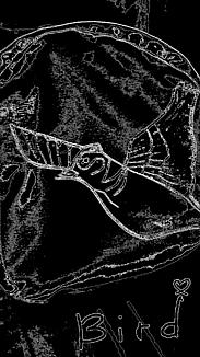 『鳥さんのポーチ』モノトーン