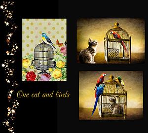 『一匹の猫さんと鳥さんたち』