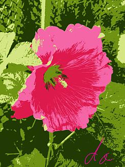 『赤花』②
