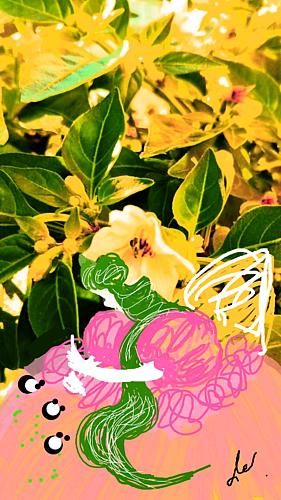 〔野菜の花の精⑤〕