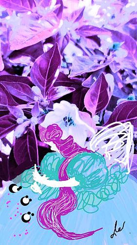 〔野菜の花の精③〕