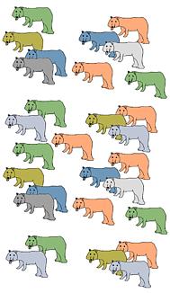 熊 色々な色