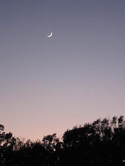 上弦の月と一番星
