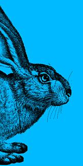 ウサギ シンプル 青