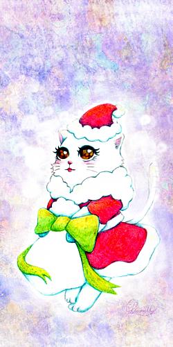 クリスマスサンタねこ。
