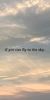 空を飛べたなら