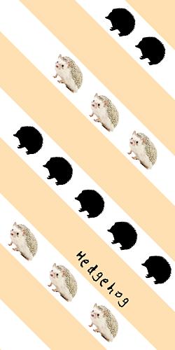 Hedgehog(ハリネズミ)