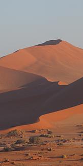 ナミブ砂漠の朝