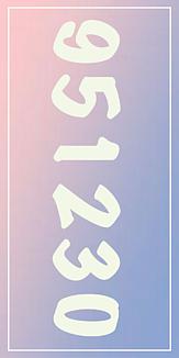 17(951230)