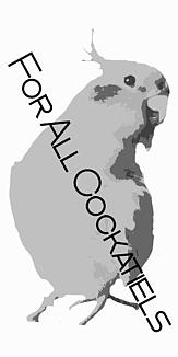 オカメインコ モノクロケースフレーム タイプA