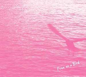 かもめ (book) ピンク