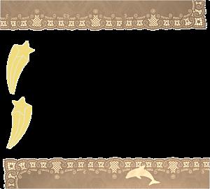 ドルフィン ライトブラウン フレーム