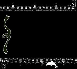 ドルフィン 黒レースフレーム