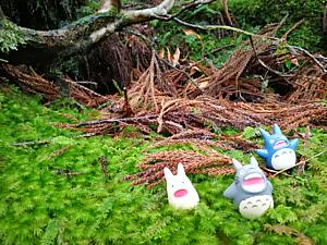ようこそ、トトロの森へ3