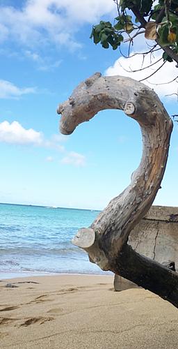ハワイのビーチ☆