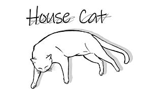 飼い猫イラスト