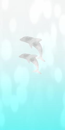 ドルフィン