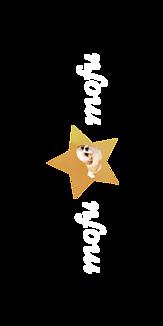 もふもふひかるちゃんシリーズ10(犬、シーズー)