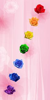 Rainbow②