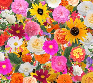 色々なお花で埋め尽くしたカラフルなスマホケース