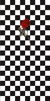 チェッカーボード «ローズ»