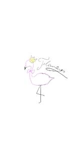 フラミンゴ 白