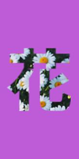 花 purple×デイジー