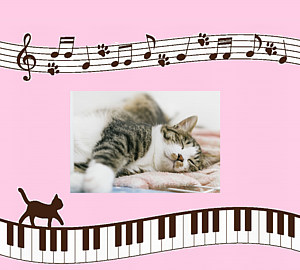 眠っている猫/ねこ/ネコ&音譜&鍵盤4