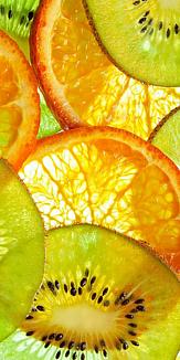 フルーツ~オレンジ&キウイフルーツ