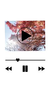 紅葉の動画