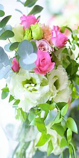 flower greenⅡ