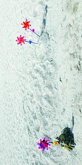 砂浜の風車