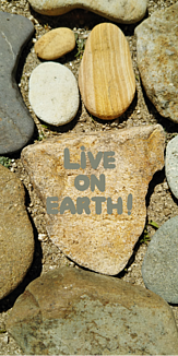 Live on earth 1