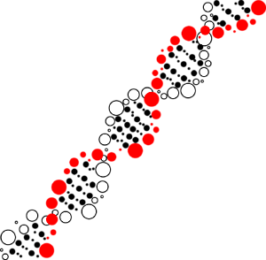 DNA 水玉 赤×白