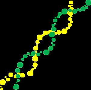 DNA 水玉 緑×黄