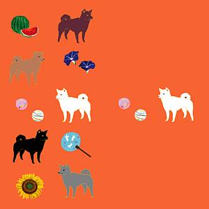 柴犬と日本の夏(珊瑚色/全12色)