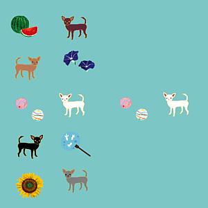 チワワと日本の夏(白群/全12色)