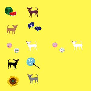 チワワと日本の夏(檸檬色/全12色)