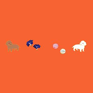 ダックスと日本の夏(珊瑚色/全12色)