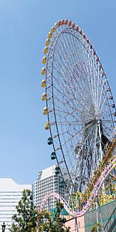 THE 横浜