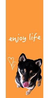 No dog, no life6