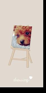 draw poodle