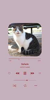 ネコねこmusic