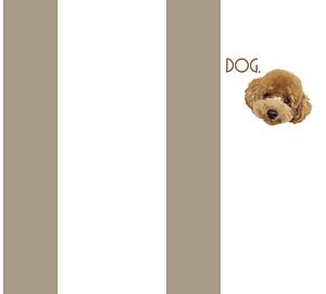 犬のトイプードル シンプルベージュ