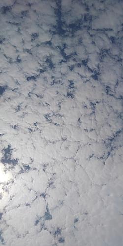 6月12日「お天気雨」の青い空☆ブルースカイ☆