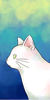 白猫 青 ケース